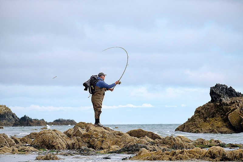 The Best Sea Fishing Rods in 2021 - A Total Fishing Tackle Review