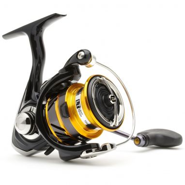 Daiwa - 19 Ninja LT Black And Gold