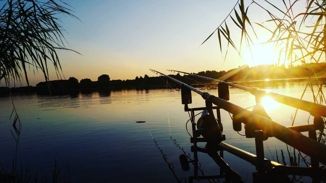 The top 10 tips for summer carp fishing