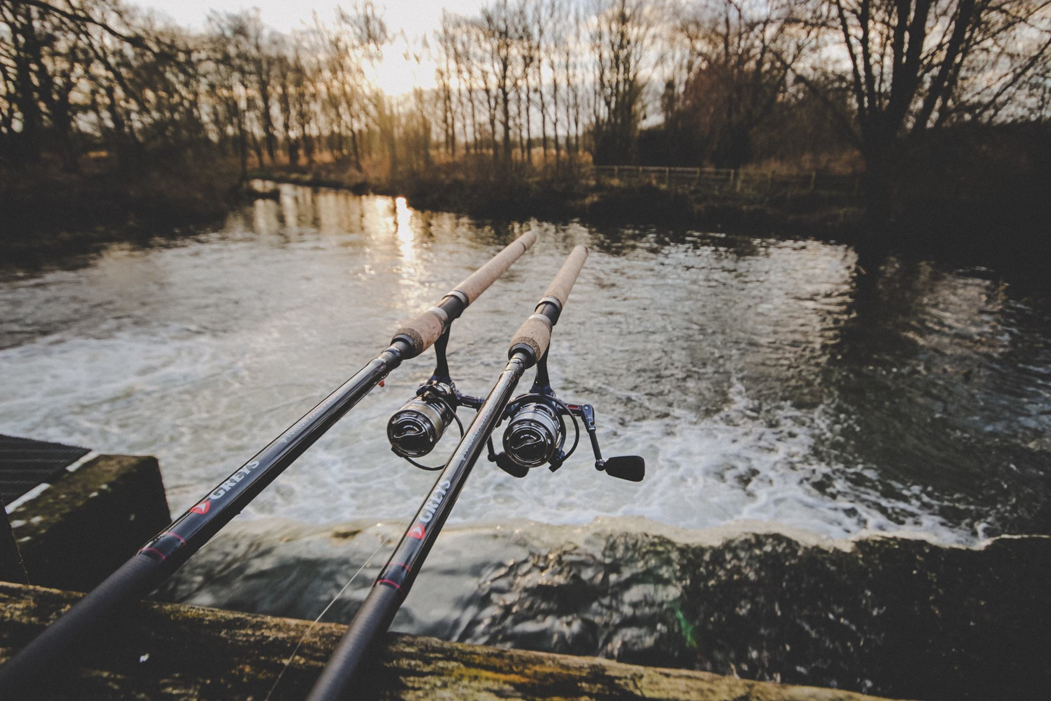 Professional Fishing Rods in 2020 | Fishing rod, Best