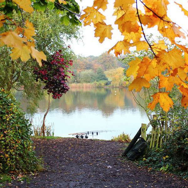 Carp Fishing In Autumn - Best Tips For Fishing In Autumn