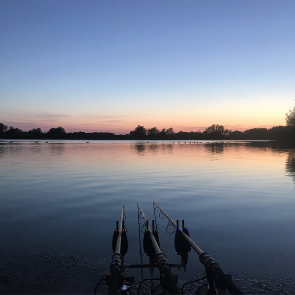 Best Carp Lakes in Essex - A Total Fishing Review