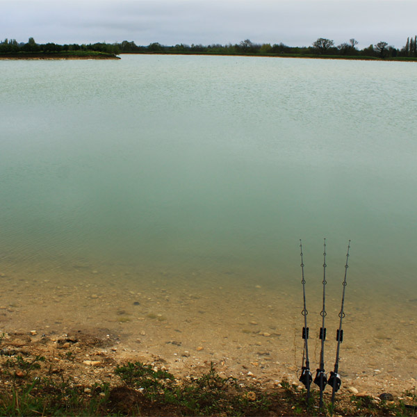 The Best Carp Lakes In England - A Total Fishing Review